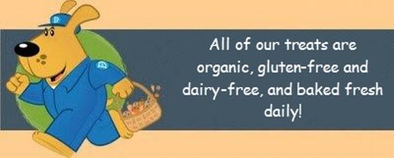 DEX Organic Banner